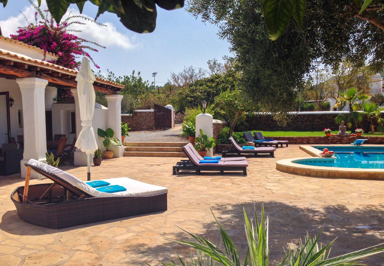 Private swimming pool and terrace Las Dalias in Ibiza